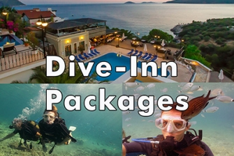 Dive-Inn Packages